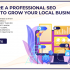Why Hire A Professional SEO Agency To Grow Your Local Business?